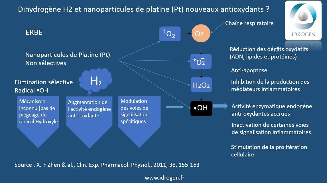 eau hydrogénée versus eaux ionisée alcaline réductrice avec la platine
